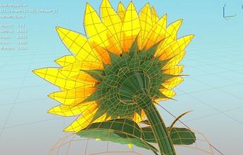 Sunflower_02